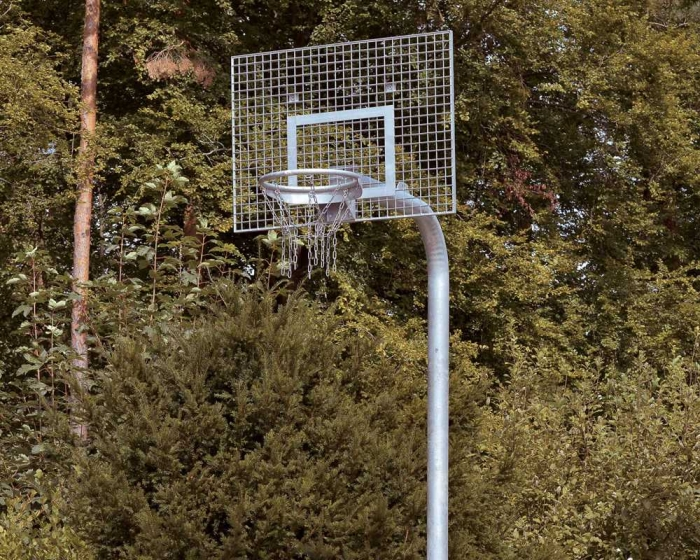 Basketballanlage Court Royal<br> Heavy Duty mit Gitterrost-Zielbrett